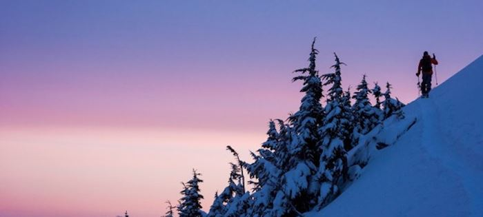 5 Fun Things To Do in Whistler this January