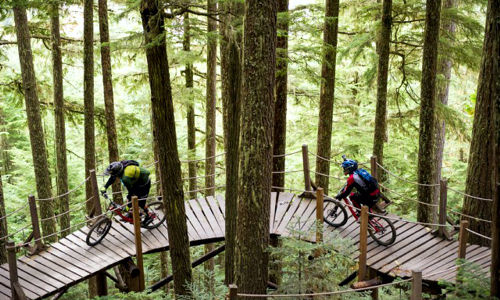 Bike Park Packages