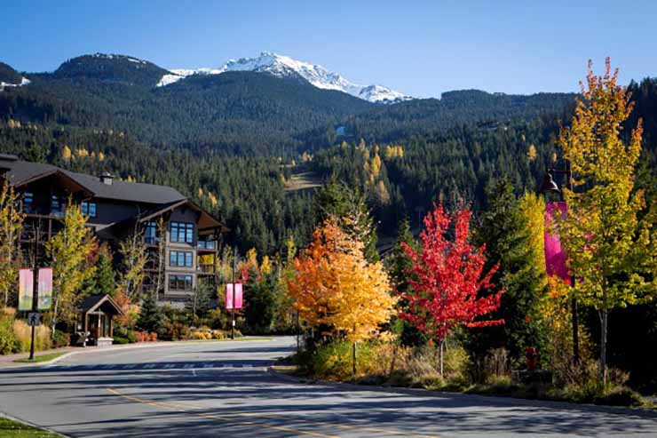 Whistler Creekside Fall